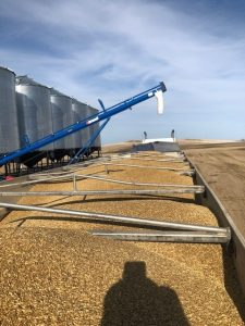 Agri-Trans-Transportation-Grains